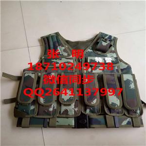 训练背心虎斑迷彩训练携行具组合十二件套