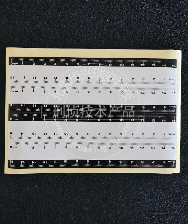 15cm黑白不干胶比例尺 双色比例尺 可写字比例尺 维一性比例尺.jpg